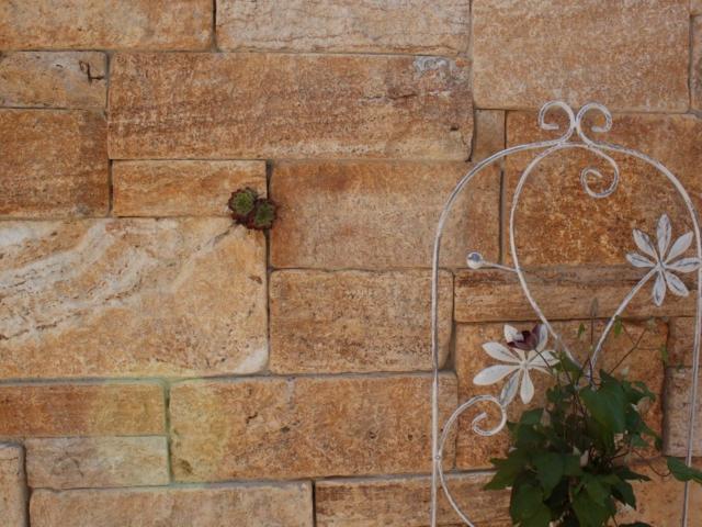 Systemmauer Travertin Ordon-Gold Fine-Line